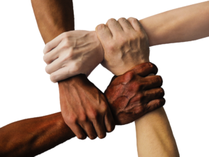 arms and hands of several shades grasp each others' wrists